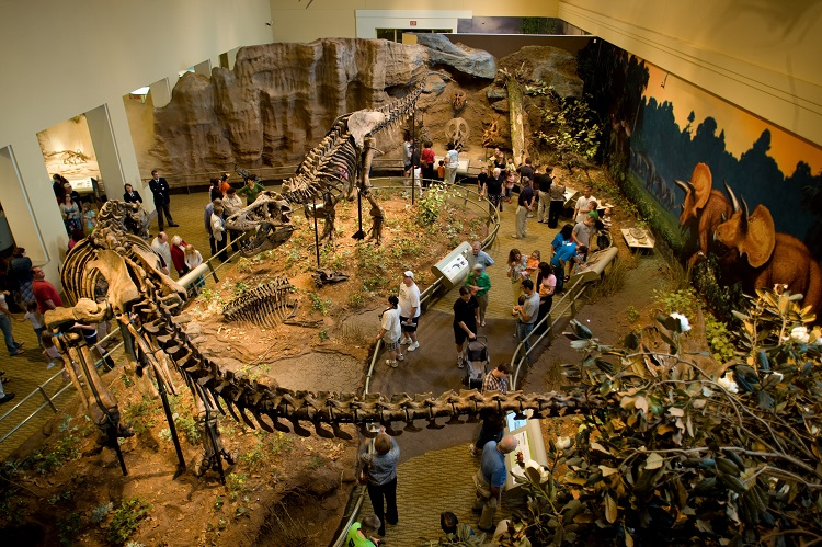 aeriel view - dinosaur hall