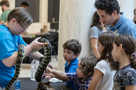 Children touching a python in the Hall of Sculpture