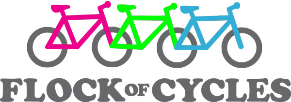 Flock of Cycles